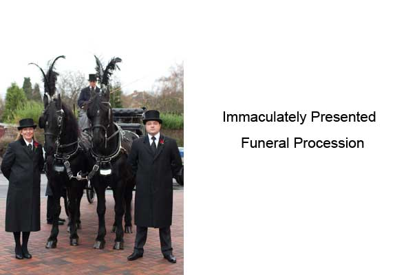 traditional-horse-drawn-or-limousine-funeral-birmingham