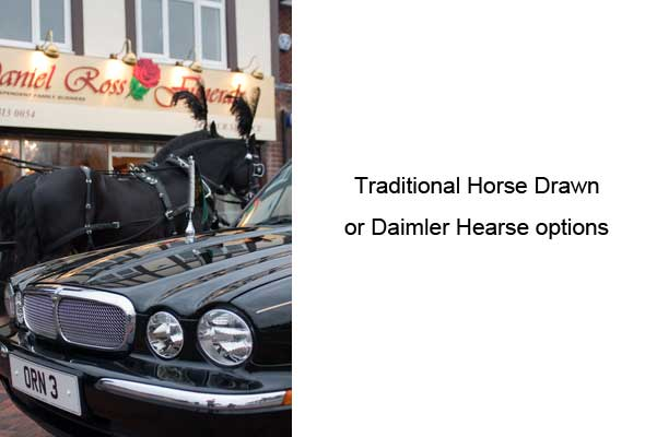 traditional-horse-drawn-or-limousine-funeral